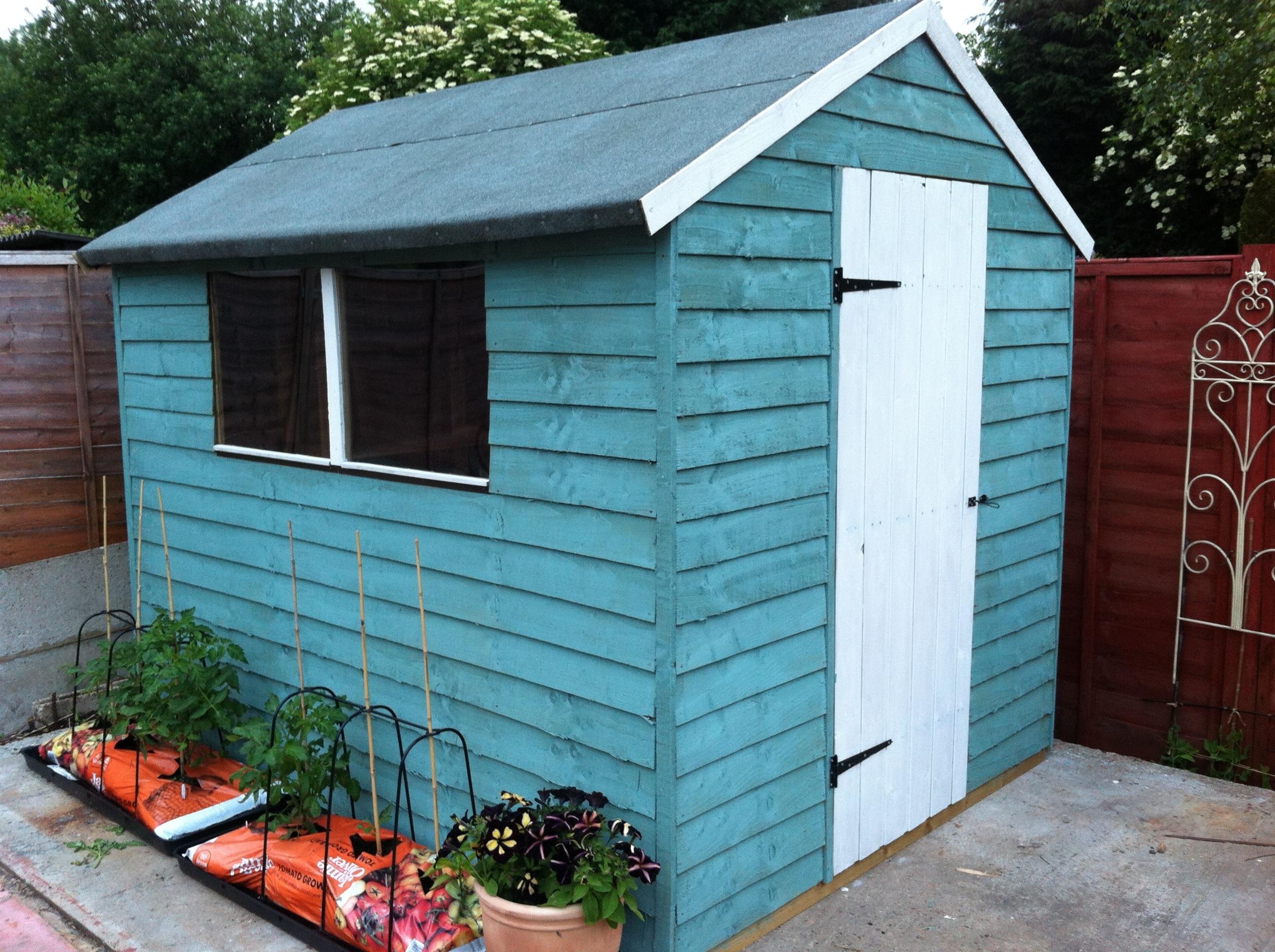 1000 images about shed on pinterest painted shed sheds. Black Bedroom Furniture Sets. Home Design Ideas