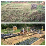 New No Dig Allotment – A Year In Pictures